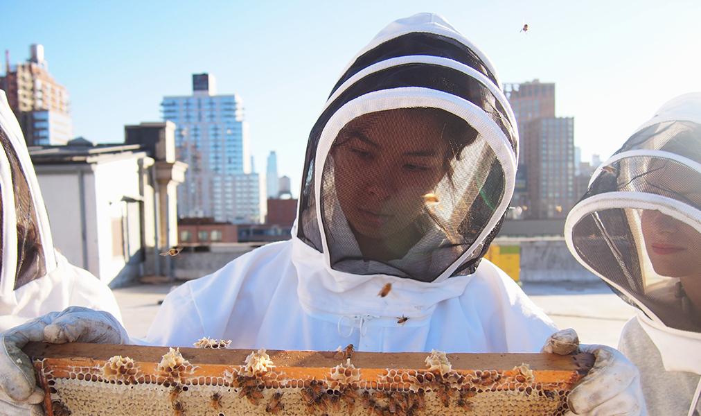 NYC Beekeepers Association